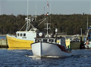 A fishing boat heads to dock in Eastern Passage, N.S. on Oct. 2, 2013. THE CANADIAN PRESS/Andrew Vaughan