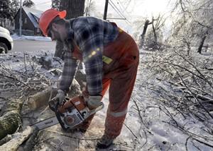 Peel Region employee Dwayne Berrigan cuts limbs from iced trees in Brampton, December 23, 2013. THE CANADIAN PRESS/J.P. Moczulski