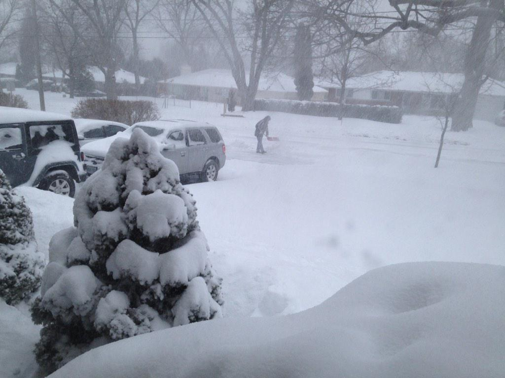 Winter Storm Southern Ontario: Southern Ontario Walloped By Winter Storm
