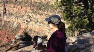 This May 15, 2015 photo provided by Carol Bryant, shows herself with dog Dexter at Mather Point on the Rim Trail in the Grand Canyon in Arizona. Hotels ranging from major chains to small outposts are capitalizing on the wave of travelers who bring their dogs, some by charging for perks that pamper pets and others by expanding fees. (Darlene Bryant/Courtesy of Carol Bryant via AP)