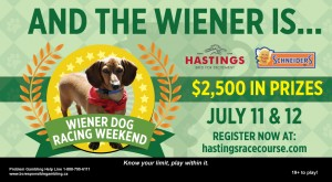 Hastings Racecourse Wiener Dog Races @ Hastings Racecourse | Vancouver | British Columbia | Canada