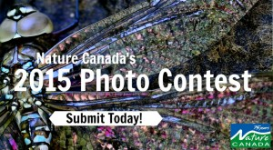 Nature Canada's 2015 Photo Contest!