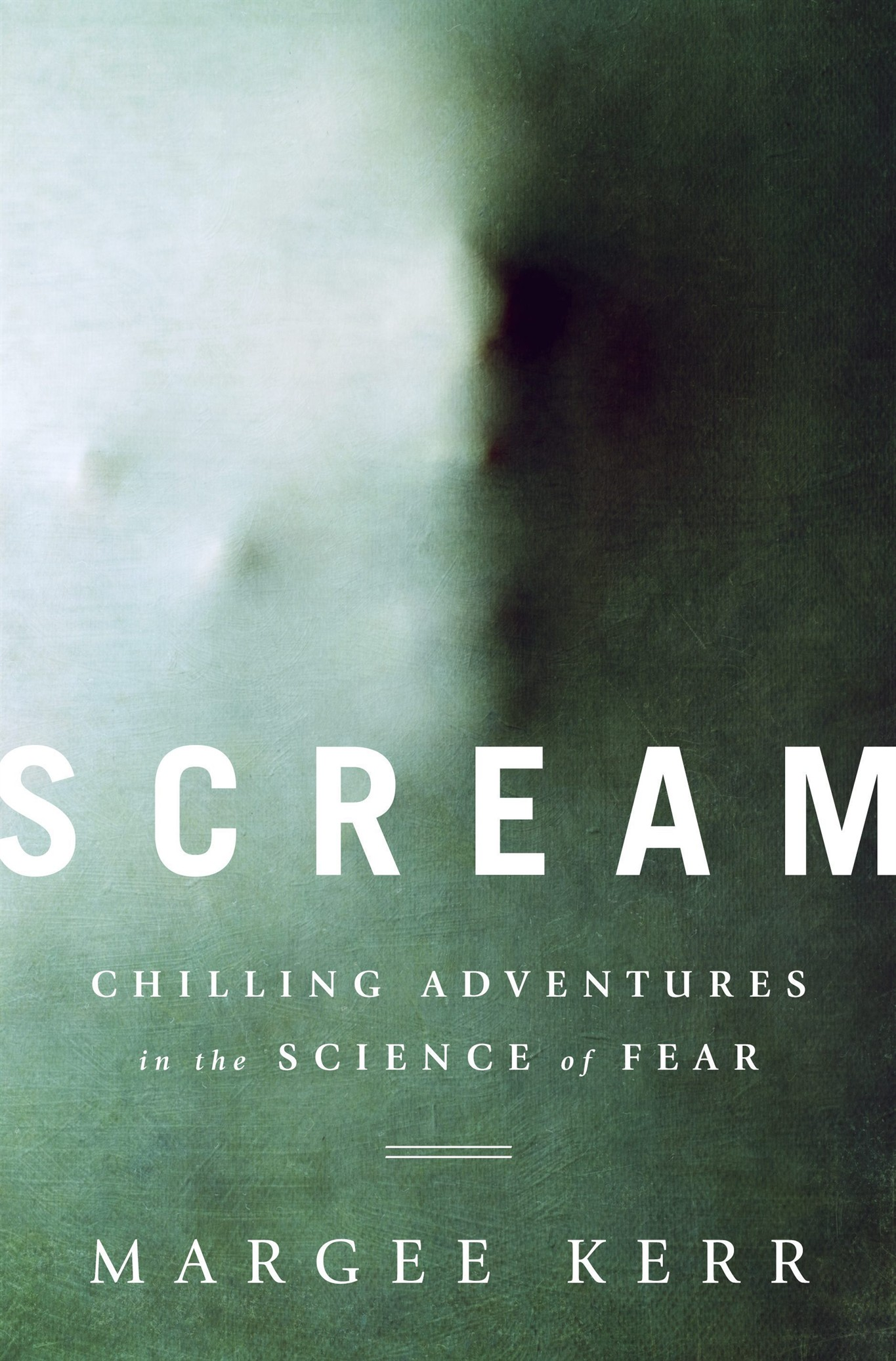 Sociologist who studies fear at Halloween attraction explains it ...