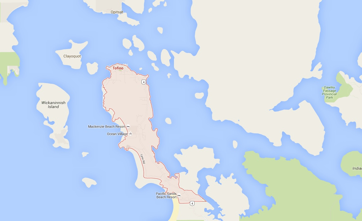 Whale watching boat with 27 aboard sinks off Vancouver Island - NEWS