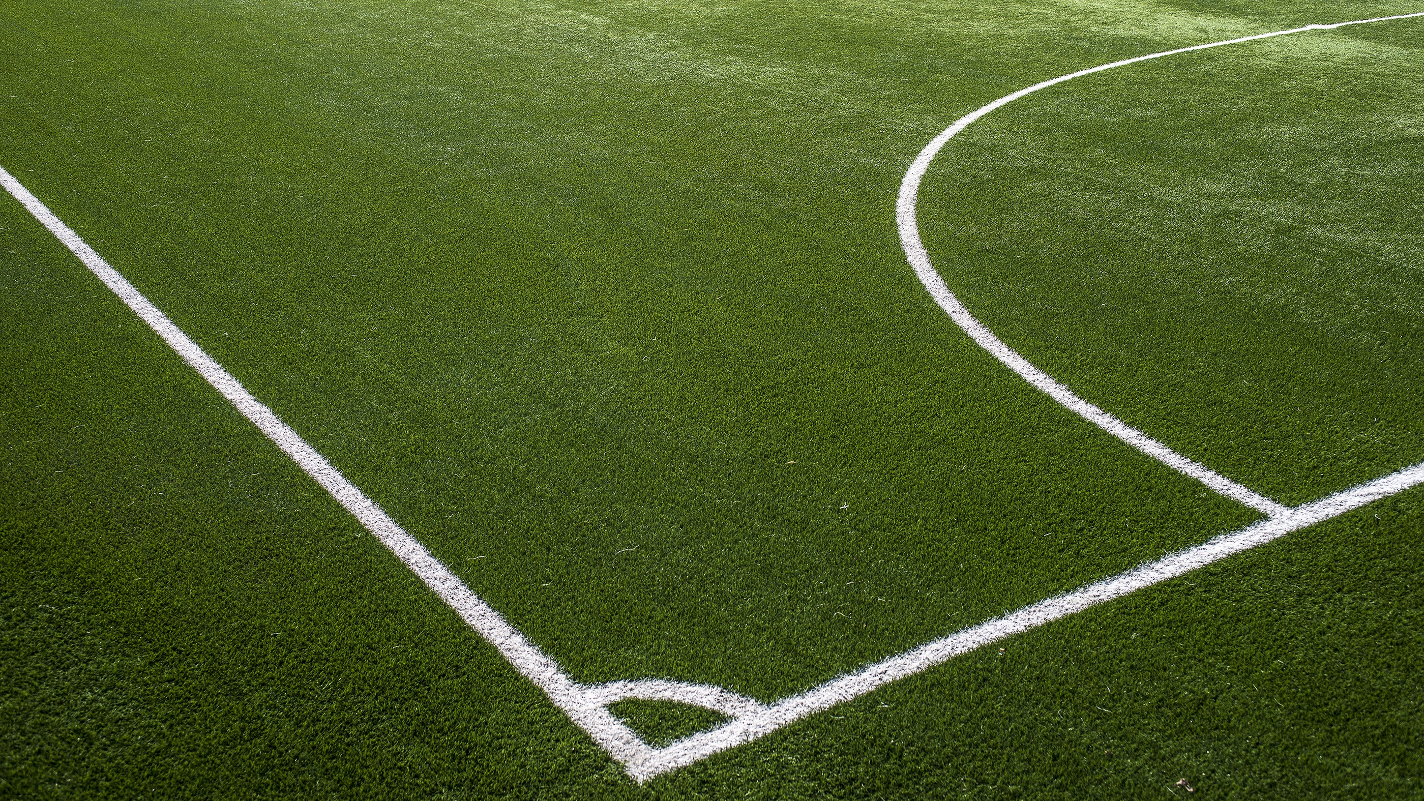 How safe is artificial turf? Vancouver Park Board commissioner calls for detailed examination