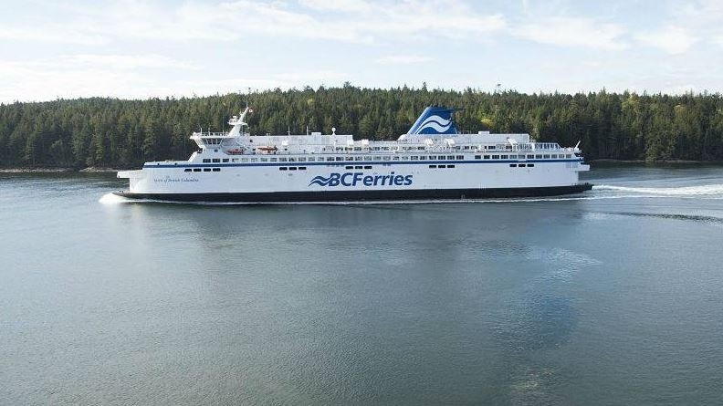 Swimming bear delays BC Ferry