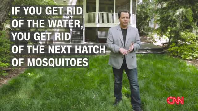 Video How To Get Rid Of Backyard Mosquitoes Video