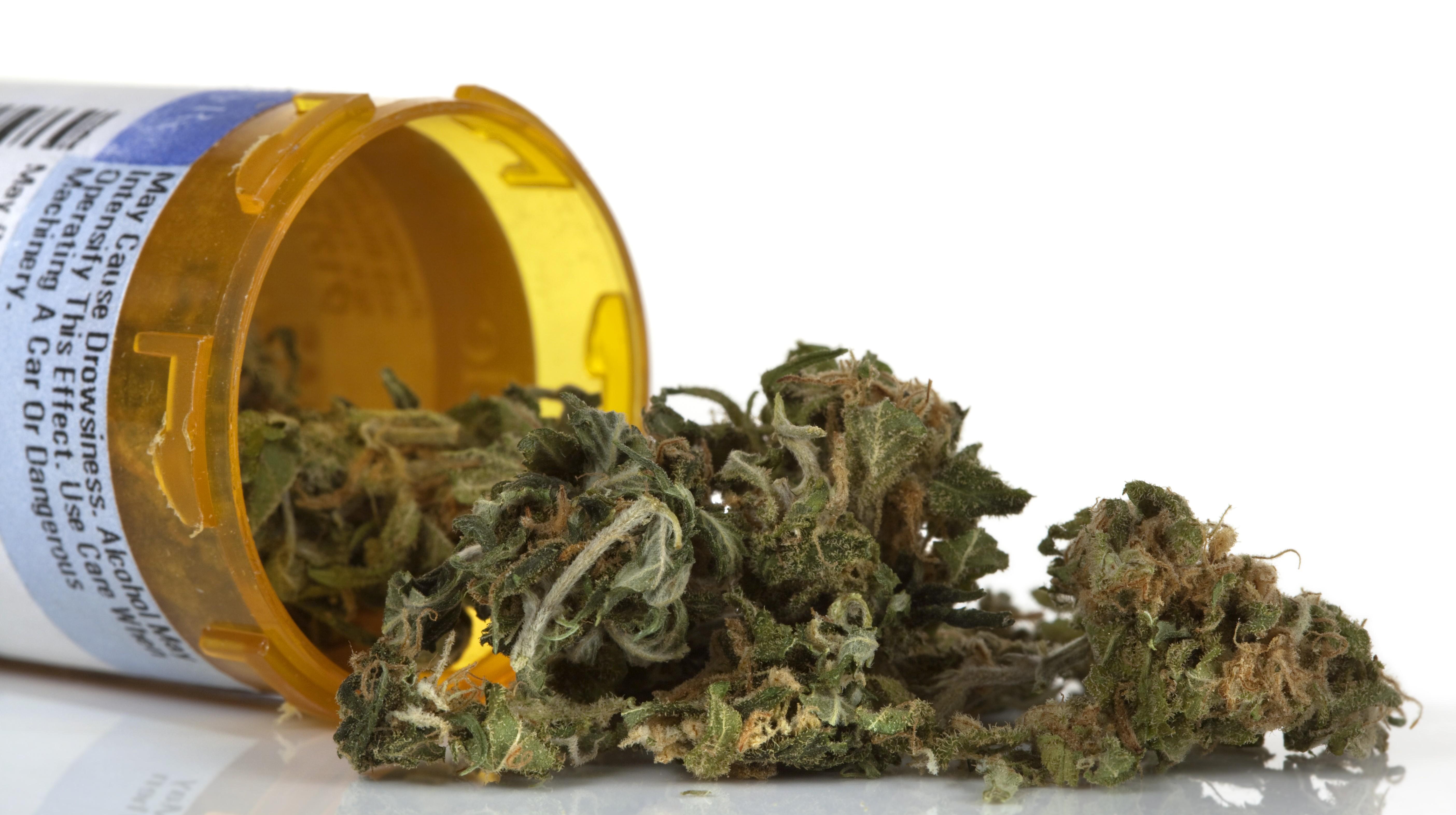 Feds set rules for growing medical marijuana