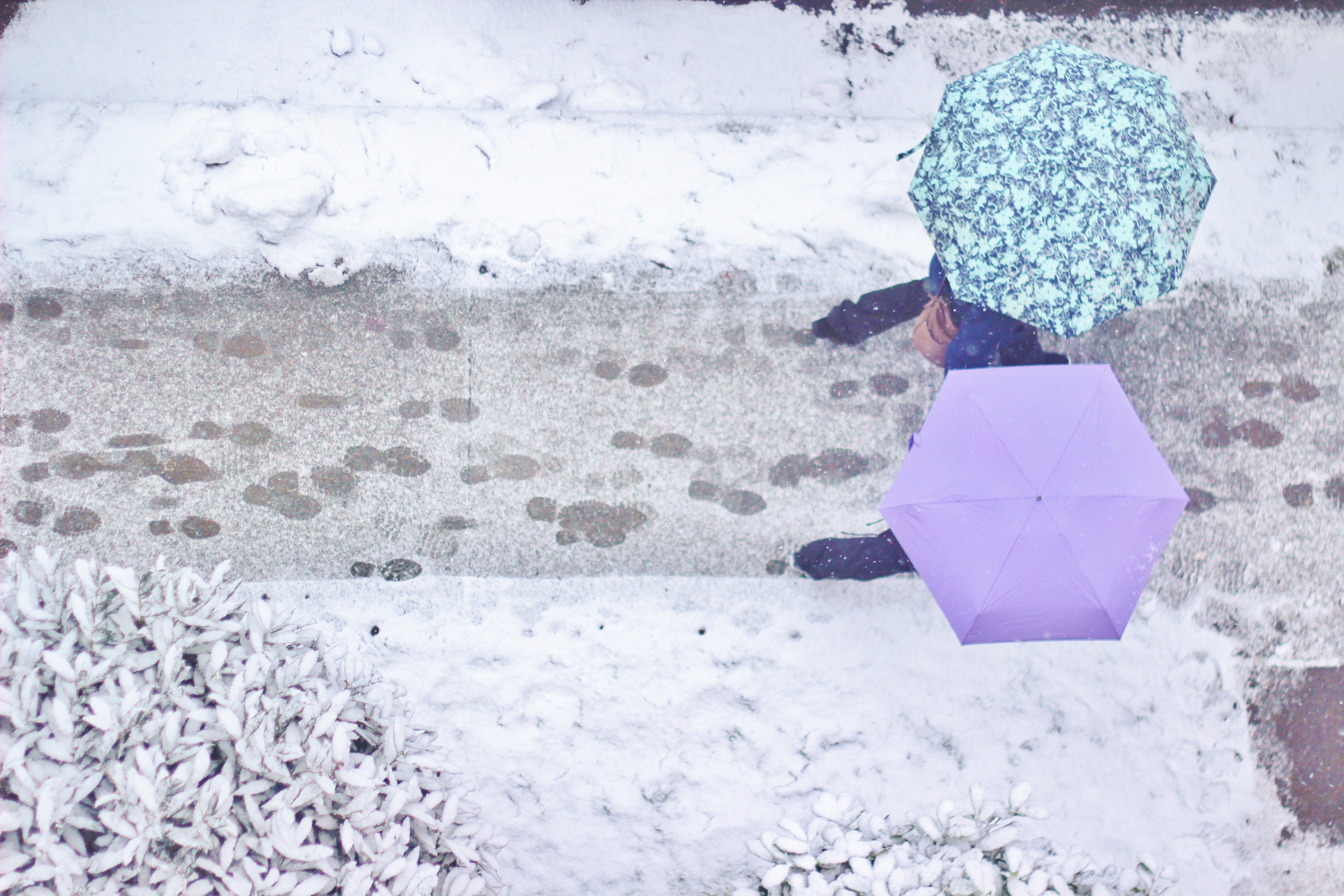 More snow expected for weekend