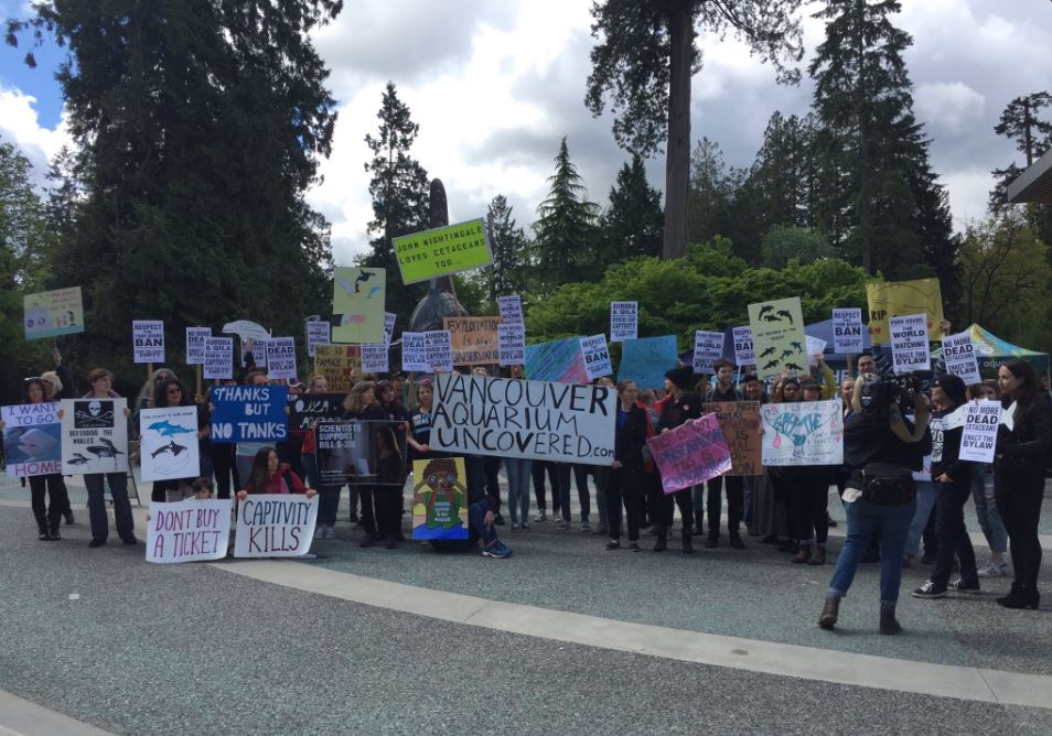 Vancouver Aquarium 'not ready to give up the fight' following bylaw vote