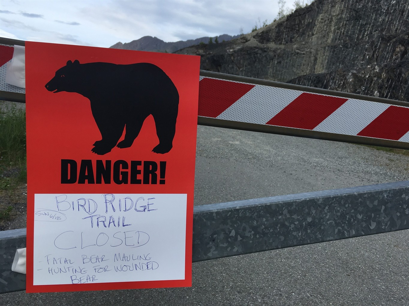 Black bears kill two in Alaska, including teenager in extreme race