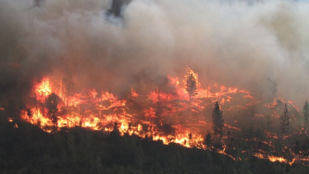 Lightning Strong Winds Could Worsen Bc S Wildfire Situation