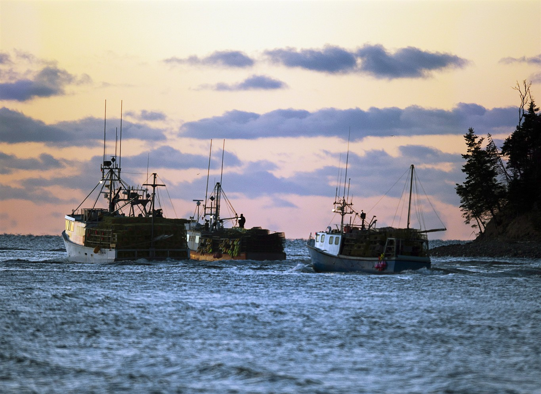 Non aboriginal fishermen protest indigenous lobster for Nova scotia fishing