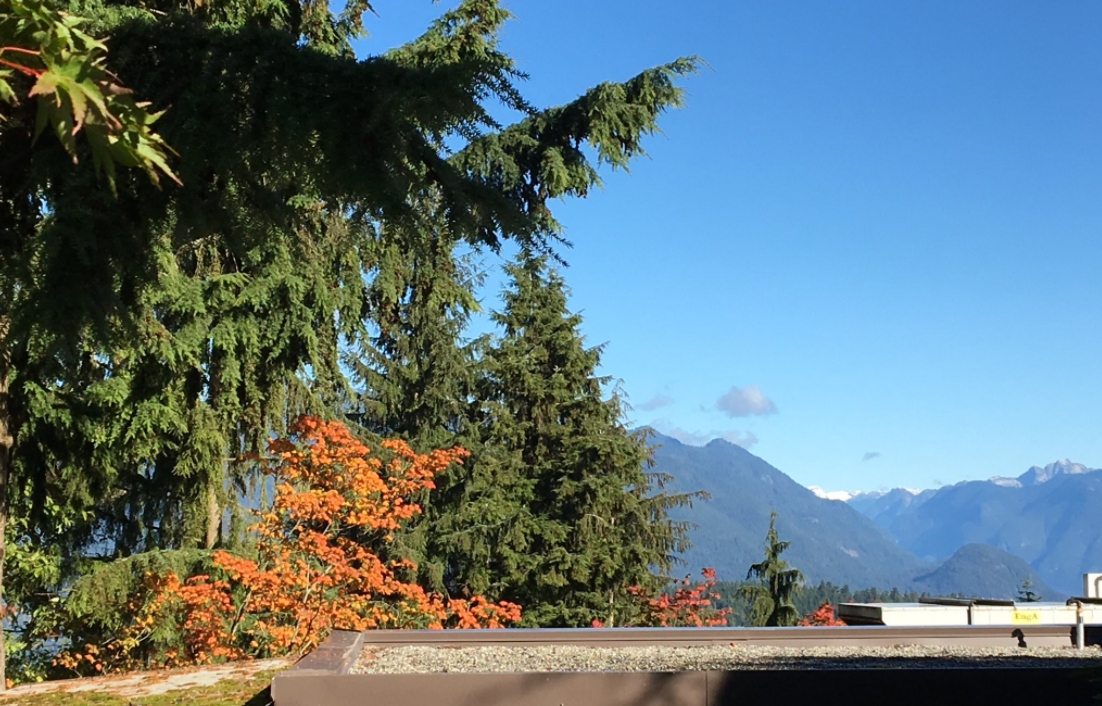 SFU students worried about safety after series of recent assaults