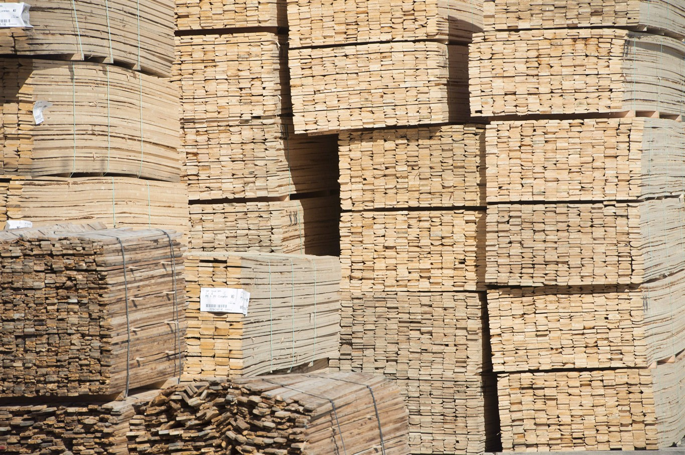 Canada files lumber trade challenge against US