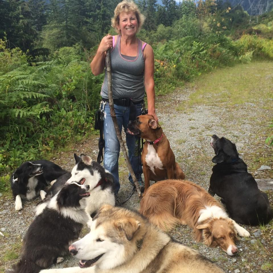 BC dog walker found alive after two days