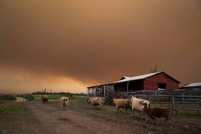 Air quality to worsen as smoke returns