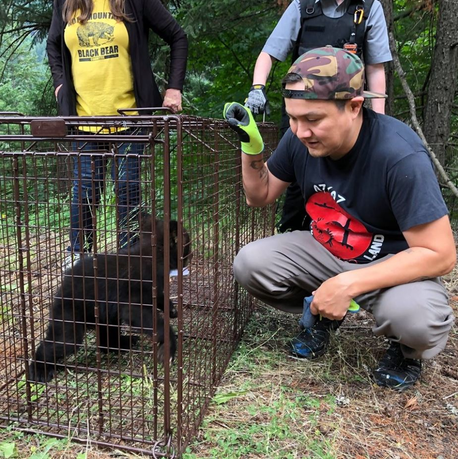 Langley man saves bear cub with CPR