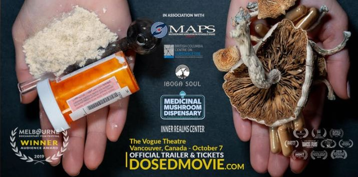 A story of underground healing: documentary about medicinal magic mushrooms to premier