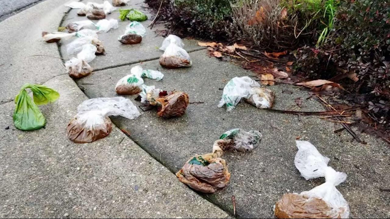 New Westminster city gardeners upset with dog poo dumpers