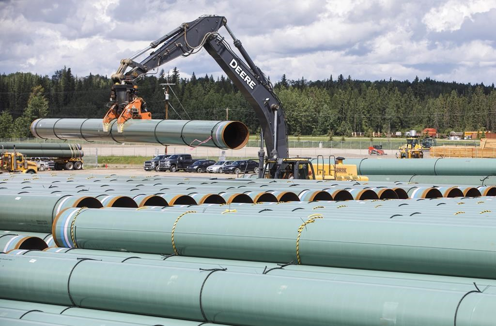 Trans Mountain pipeline to resume operations after oil spill