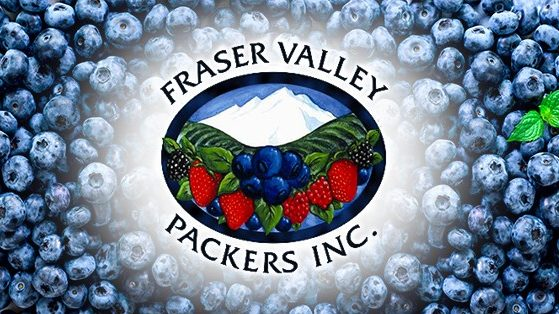 COVID-19 outbreak declared at Fraser Valley blueberry plant