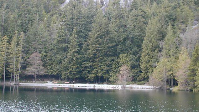 Man drowns in Squamish's Browning Lake - NEWS 1130
