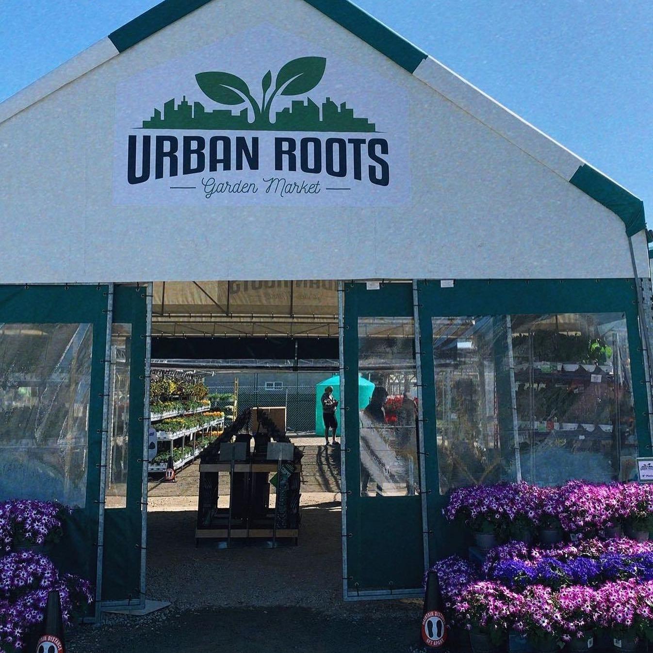 Gardens across Metro Vancouver receiving big plant donation - NEWS 1130