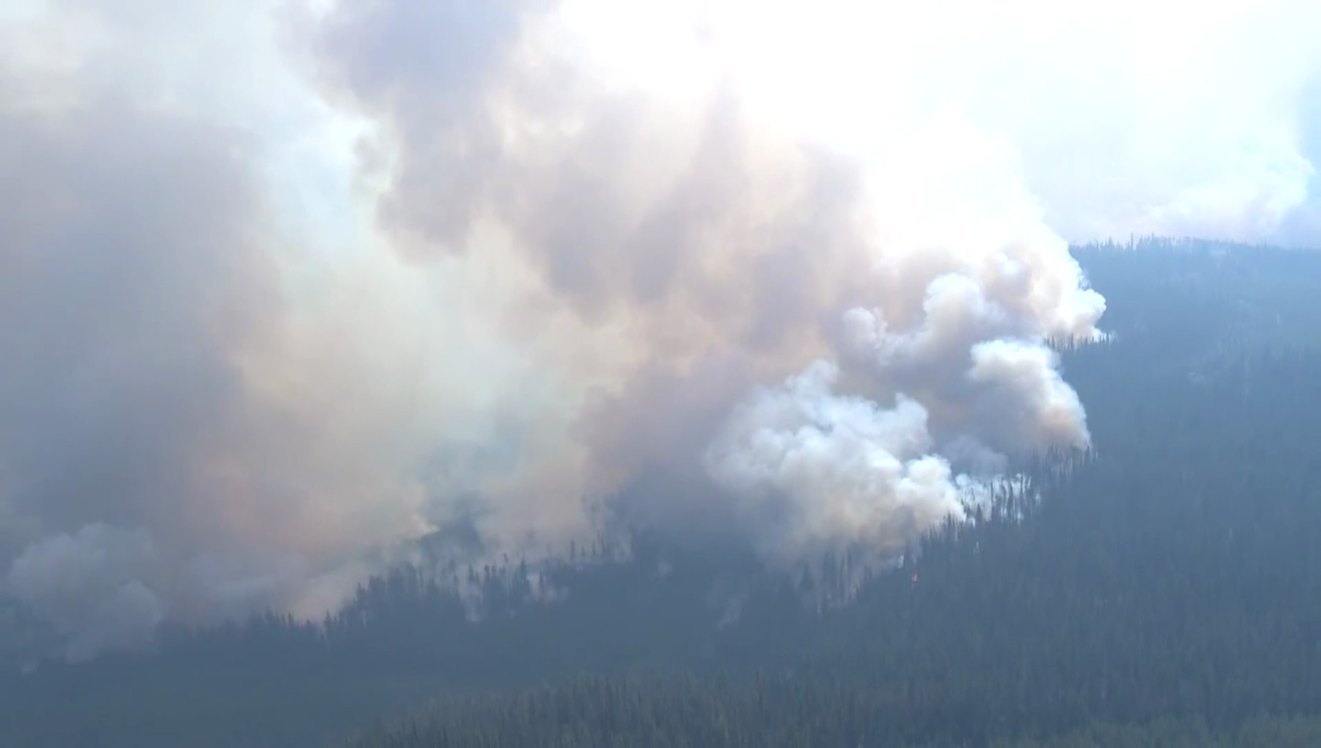 B.C. wildfires: Travel warning issued for Interior, aggressive growth forecast